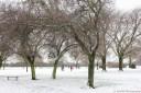 Again the Lampton Park